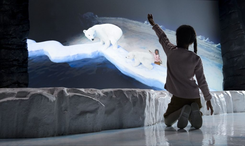 Interactive AR Install frozen planet bbc lci productions
