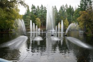enchanted forest musical fountain lci scotland