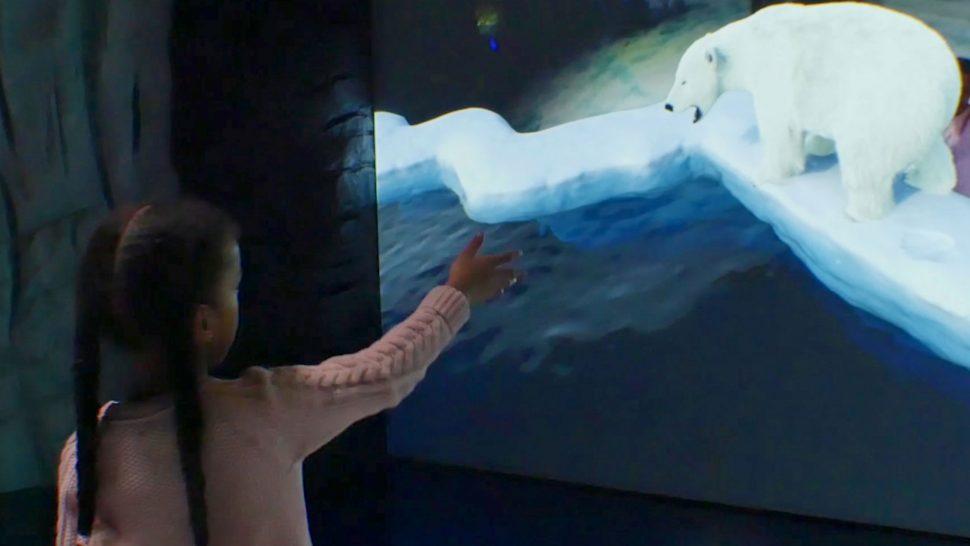 LCI's augmented reality aquarium experience