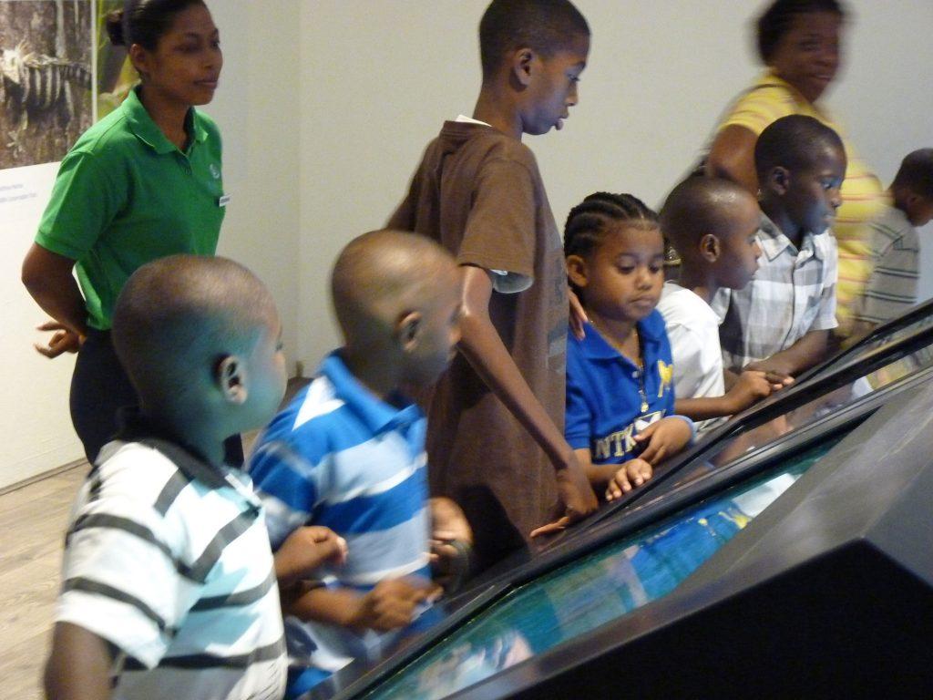 LCI's Education interactive installation
