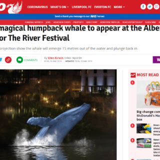 echo article on LCIs whale song